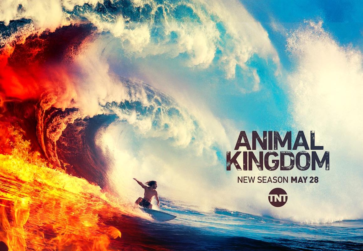 Animal Kingdom S4