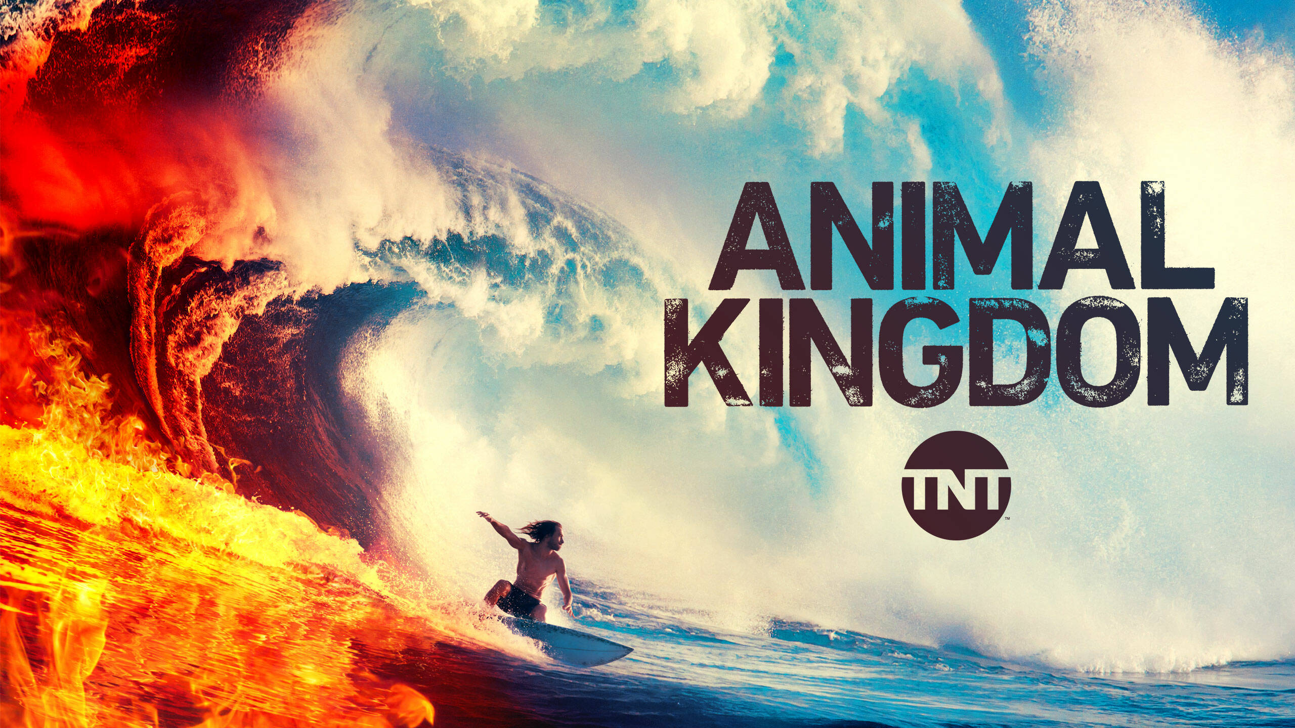 Animal Kingdom key art