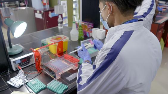 Coronavirus suspected samples in a lab in Kathmandu, Nepal