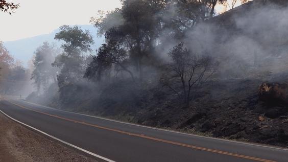 Smoke along the road in Ojai, CA